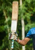 Batsman raising his bat after scoring a century royalty free stock photo