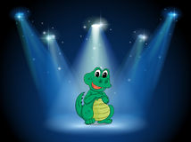 A young crocodile at the stage with spotlights Stock Photo