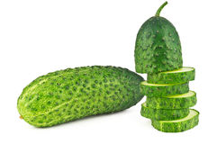 Young cucumber Royalty Free Stock Photo