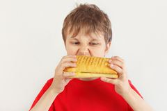 Young cut boy in a red shirt eating a tasty cheeseburger on white background royalty free stock image