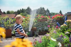 Cute boy playing with water. Young cute boy kid child four years old, having fun with water, watering flowers, leisure activity outdoor royalty free stock photos