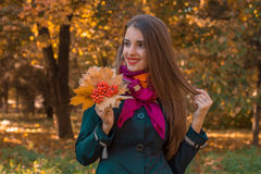 Young cute girl with long hair looks toward keeps leaves from Rowan in his hand and smiles Stock Photos