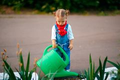 Young girl with watering pot stock images