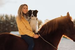Young happy cute smiling woman with her dog border collie sit on horse in snow field on sunset. yrllow dress