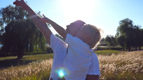 Young dad holding his child on hands at the meadow. Little son and handsome father pointing to something at the field stock video