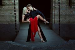 Young dancers perform Argentine tango. Stock Image