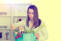 Young woman with her food- shopping in the kitchen. Young dark haired woman with her food- shopping in the kitchen Stock Photo