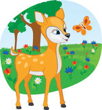 Young deer with a butterfly Royalty Free Stock Photo
