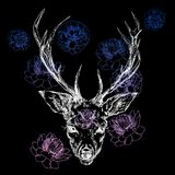 A young deer with horny horns on which peonies are planted. Illustration. Design a tattoo, a symbol of mystical magic. For your use Royalty Free Stock Photo