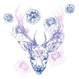 A young deer with horny horns on which peonies are planted. Illustration. Design a tattoo, a symbol of mystical magic. For your use Stock Image