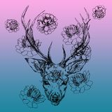 A young deer with horny horns on which peonies are planted. Illustration. Design a tattoo, a symbol of mystical magic. For your use Royalty Free Stock Image