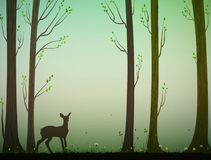 Young deer in spring or summer forest, nature scene,. Vector Stock Image