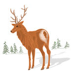 Young deer vector without gradients. Young deer and trees in the background vector without gradients stock illustration