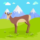 Young Deer Vector Illustration in Flat Design Stock Image