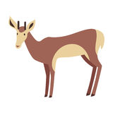 Young Deer Vector Illustration in Flat Design Stock Photo
