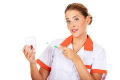 Young dentist woman with toothbrush and tooth model Stock Photos