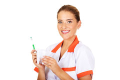 Young dentist woman with toothbrush and tooth model Royalty Free Stock Image