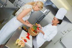 Young dietician working in kitchen. Young dietician working in the kitchen Stock Photos