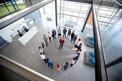 Young director hold meeting with his team in circle in company hall royalty free stock images