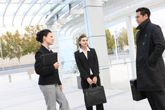 Young Diverse Business Team Royalty Free Stock Photos