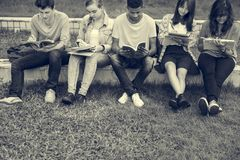 Young Diverse Group Studying Outdoors Concept. Young Diverse Group Studying Outdoors Royalty Free Stock Photo