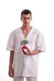 Young doctor with brain model in his hands Stock Image