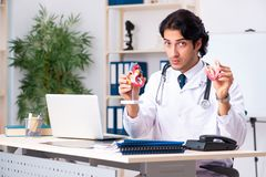 The young doctor cardiologist working in the clinic. Young doctor cardiologist working in the clinic royalty free stock images