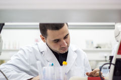 Young doctor conducts research, and it is very concentrated and Royalty Free Stock Photo