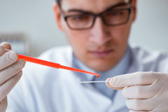 The young doctor doing the blood test Royalty Free Stock Photo
