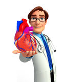 Young Doctor with heart anatomy Royalty Free Stock Photo