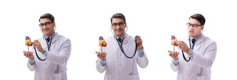 The young doctor with heart shape isolated on white. Young doctor with heart shape isolated on white royalty free stock images