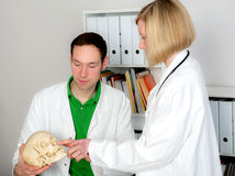 Young doctor in her office with skull. Two young doctors in her office woking together Royalty Free Stock Photo