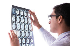 The young doctor looking at computer tomography x-ray image Royalty Free Stock Photo