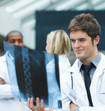 Young doctor looking at an x-ray Royalty Free Stock Photo