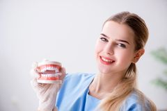 The young doctor nurse with dentures. Young doctor nurse with dentures stock photos