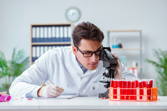 The young doctor working in the lab with microscope Royalty Free Stock Photos