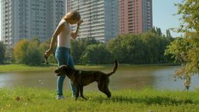Young dogs trainer with a dog in a park. Near the lake at summer. She is showing a piece of tissue and a dog jumping. Then they doing exercise snake stock video footage