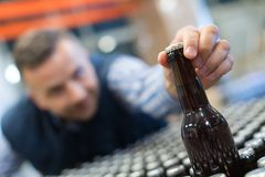 Young drunk businessman reaching bottle beer Stock Image