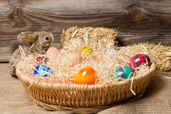 Young easter chicks in the nest Royalty Free Stock Photo