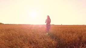 Young girl in wheat field stock video