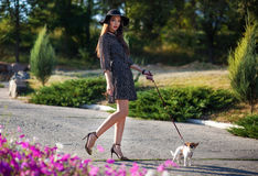 Young elegant beautiful lady with small pretty dog walking in be. Autiful park. Europe style. Wearing hat and silk dress Stock Photography