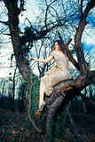 Young elegant fashion woman in forest Royalty Free Stock Image