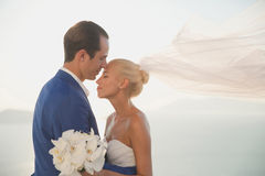 Young elegant wedding couple Royalty Free Stock Images
