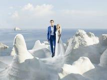 Young elegant wedding couple Royalty Free Stock Image