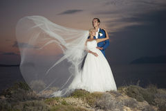 Young elegant wedding couple Stock Image