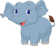 Young elephant cartoon Royalty Free Stock Image