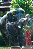 Young elephant splashing water. Royalty Free Stock Photography