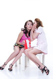 Young Emotional Women With Paper Bag. Two young women with shopping bag speaking stock images
