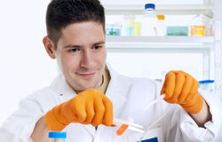 Young energetic scientist working in the research laboratory Royalty Free Stock Photos