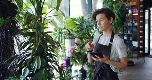 Young entrepreneur counting flowers in floral shop and using tablet at work. Young entrepreneur is counting flowers in floral shop and using tablet at work stock video footage